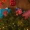 La Provence s'invite au pied du sapin de Noël 2018 avec ses saveurs d'huile d'olive et de miel