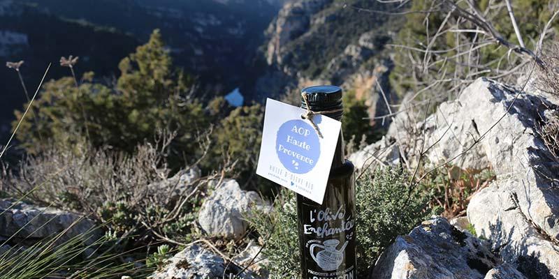 huile-olive-AOP-Bio-france-verdon-olive-enchantee-1